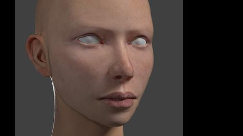 Skin texturing demonstration. preview image