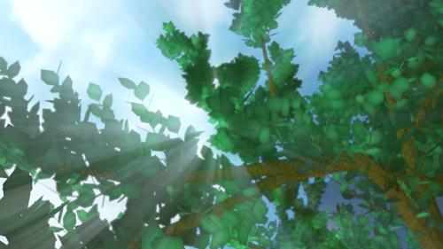 Test subsurface scatering On leaves preview image
