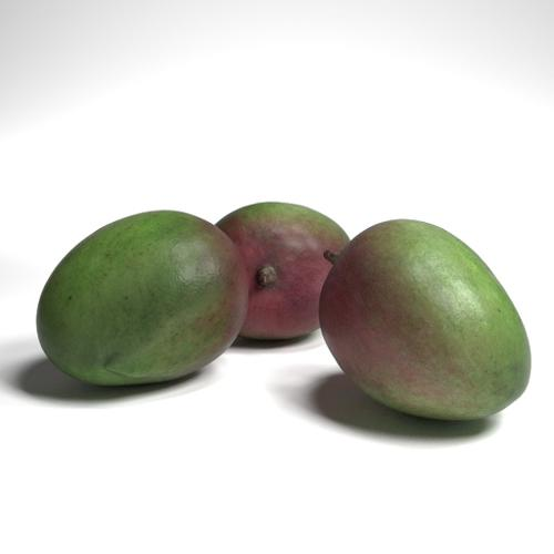 Mango Fruit preview image
