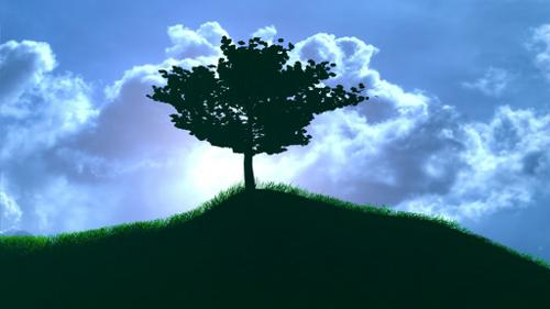 Simple Tree and Simple Grass Efect preview image