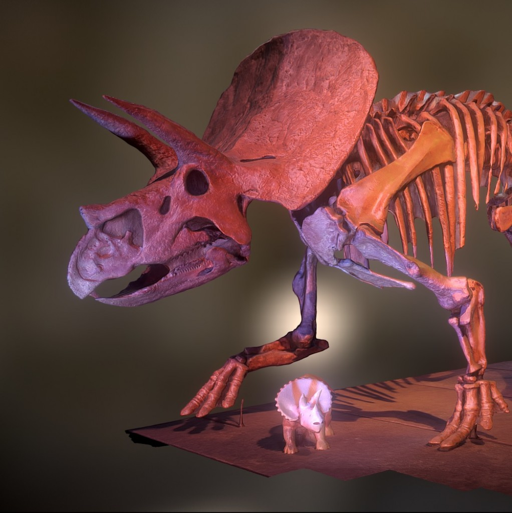Triceratops preview image 1