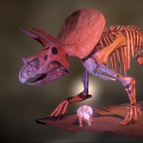Triceratops preview image