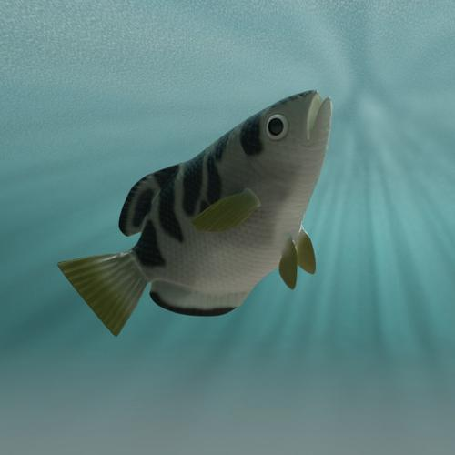 Rigged Archer Fish preview image