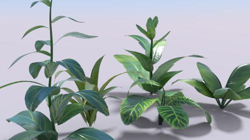 Simple plants preview image