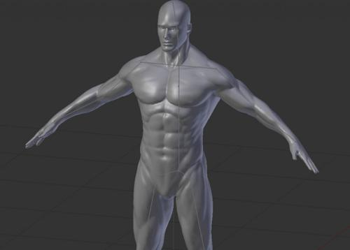 Human Male Base Mesh with armature preview image