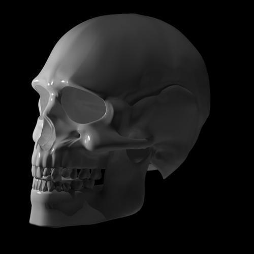 Skull preview image