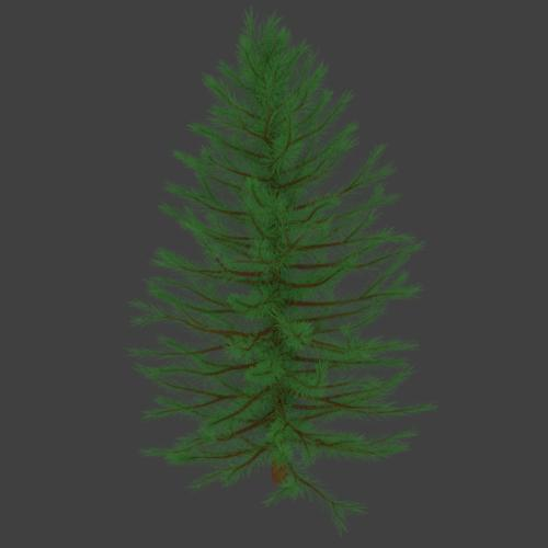 Pine Tree preview image