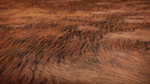 Fur Material preview image