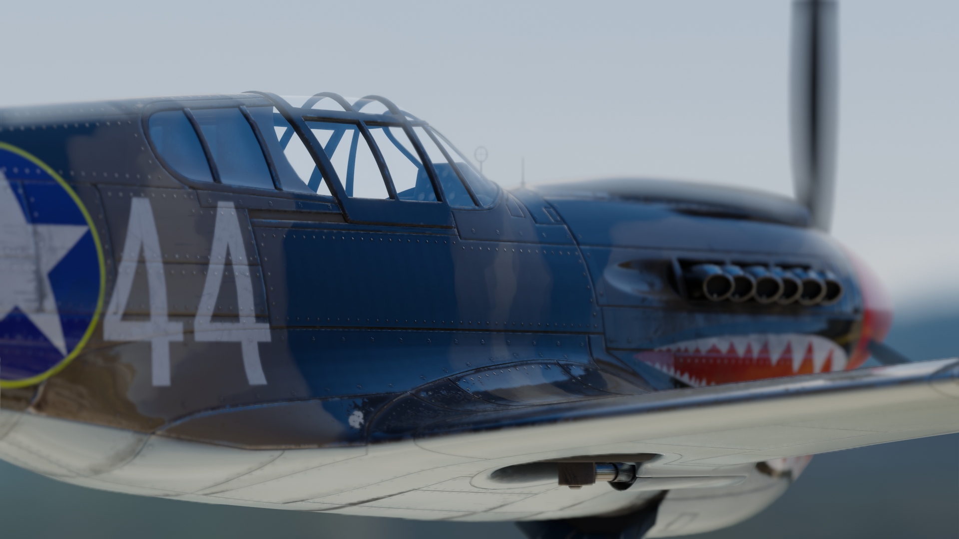 P40 Warhawk preview image 7