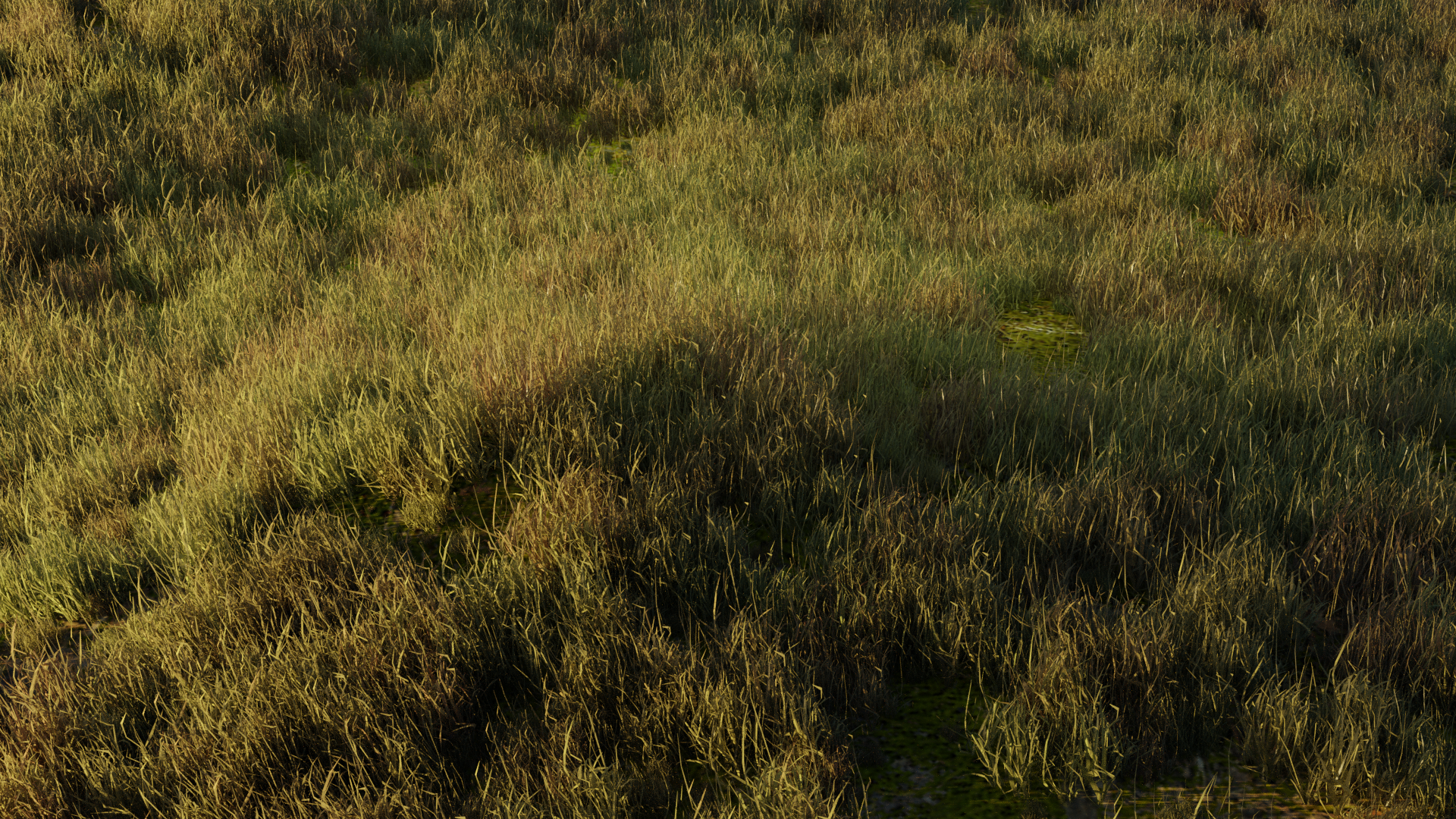 Simple Realistic Grass preview image 1