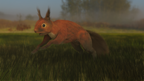 Red Squirrel preview image
