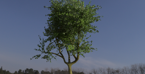 photo realistic tree  preview image