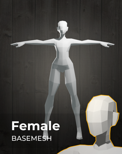 Female Basemesh for sculpting - UPDATED! preview image