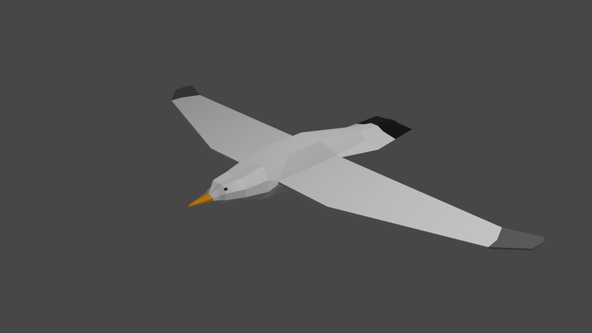 Seagull Low Poly preview image 1