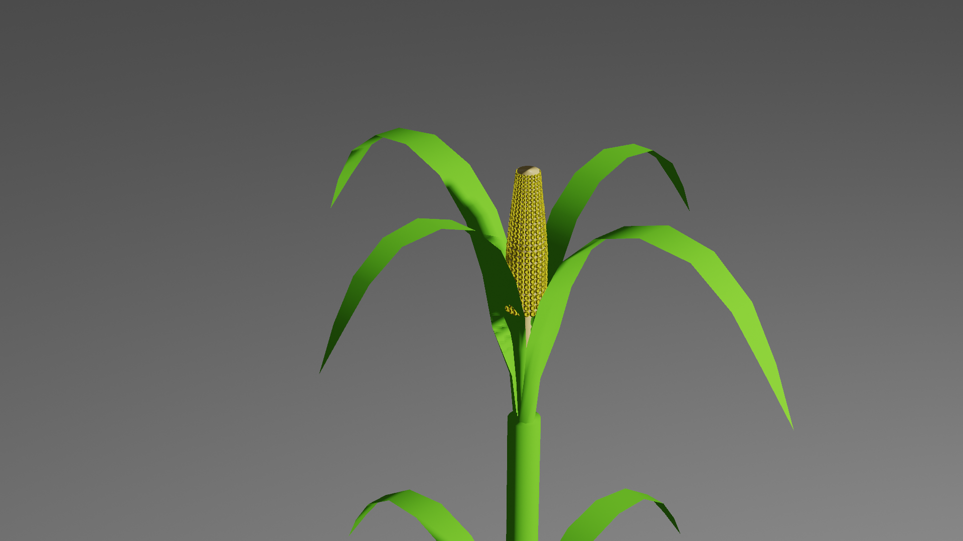 plants preview image 3