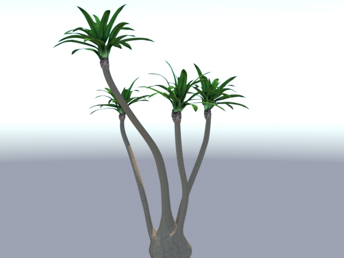 Tall Yucca preview image 1