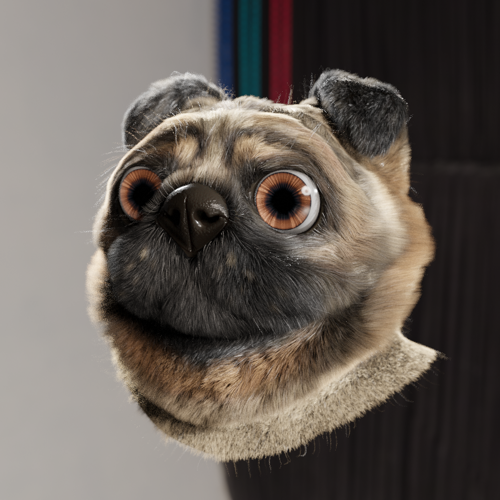 Pug head (with fur) preview image