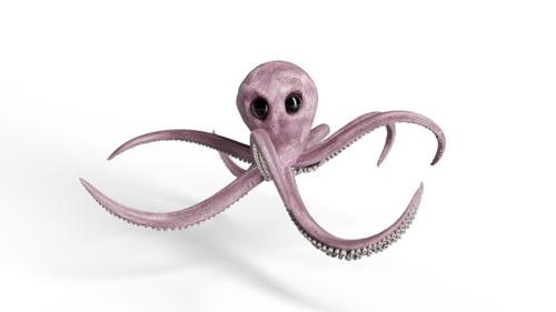 Rigged Octopus preview image