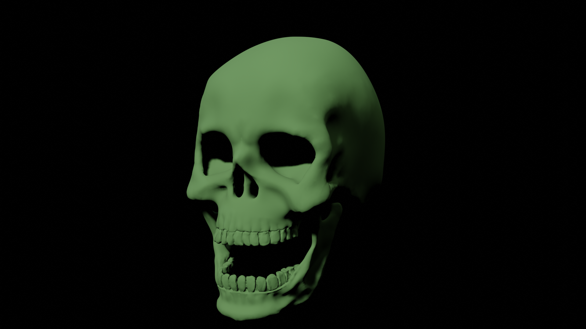 Human Skull A003 preview image 1