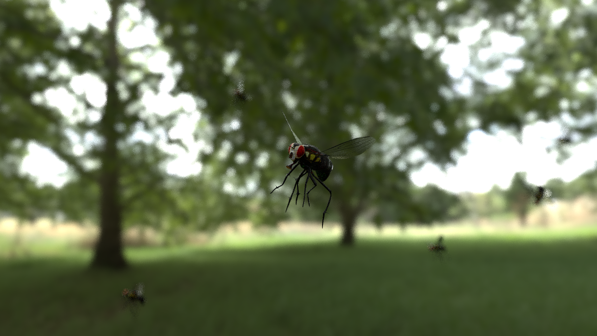 swarming flies  preview image 2