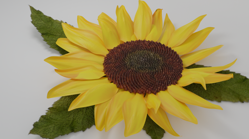 Sunflower preview image