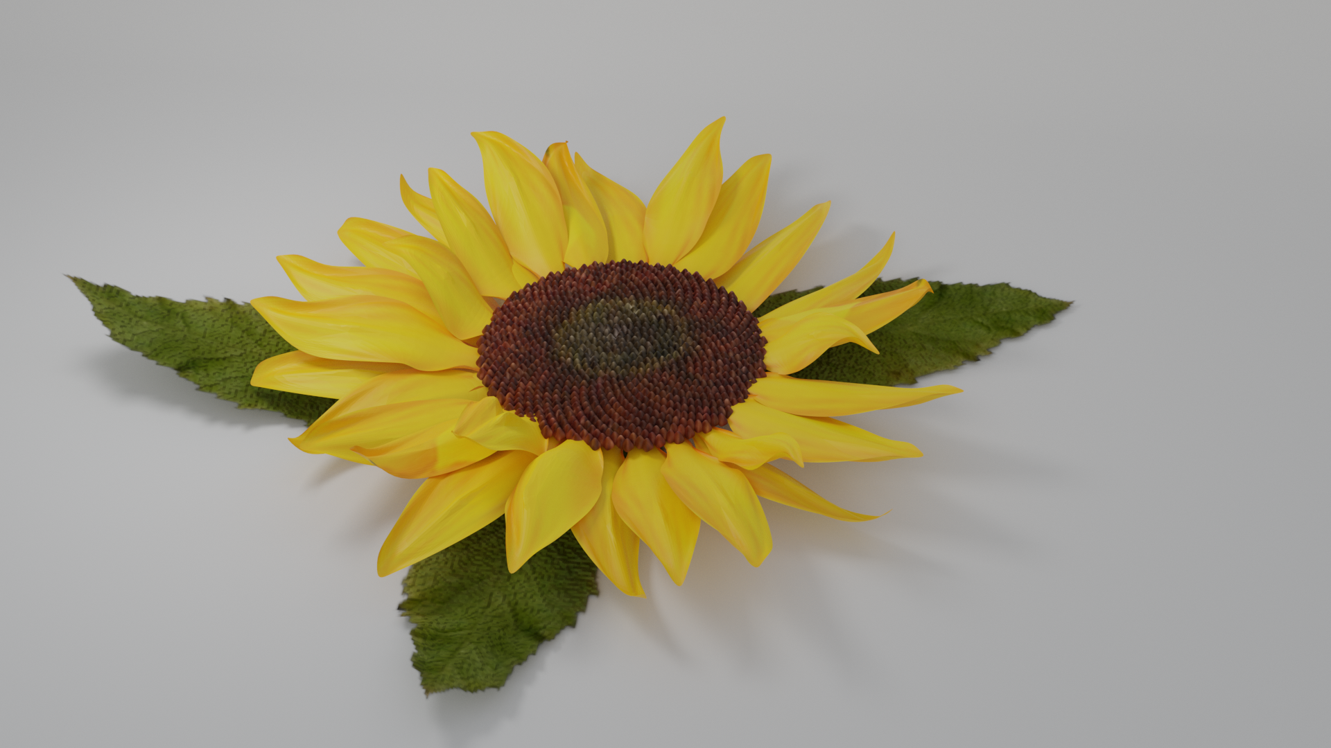Sunflower preview image 2